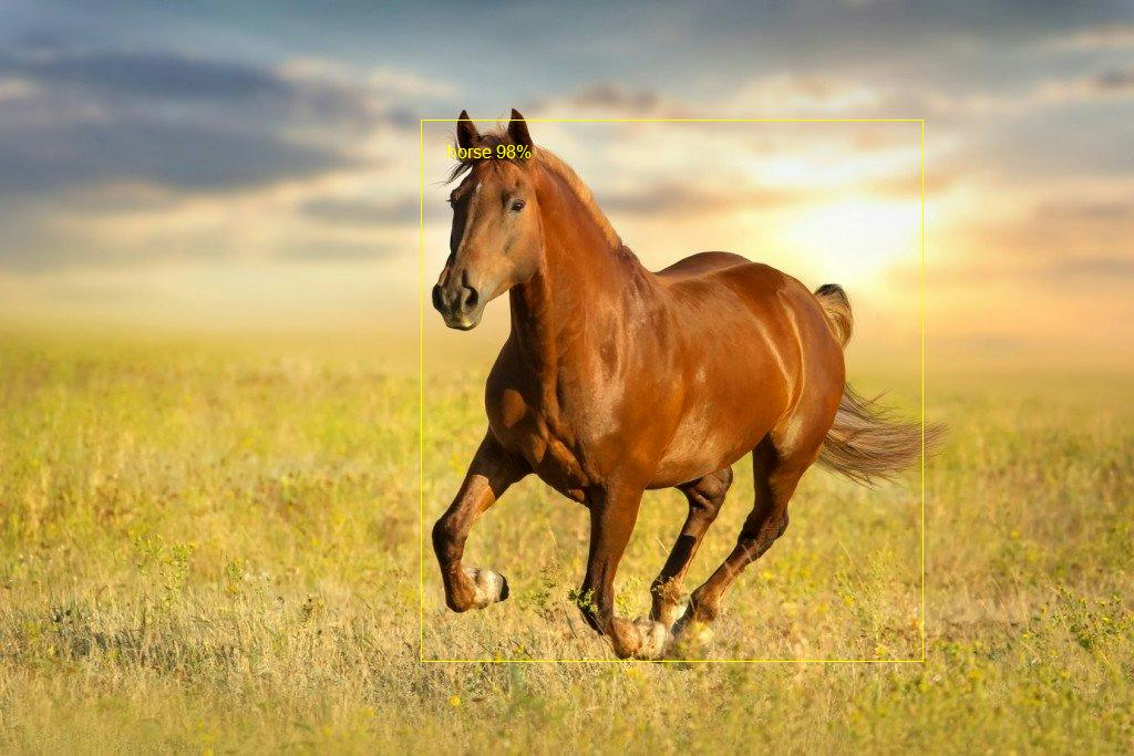 Horse object detected in image