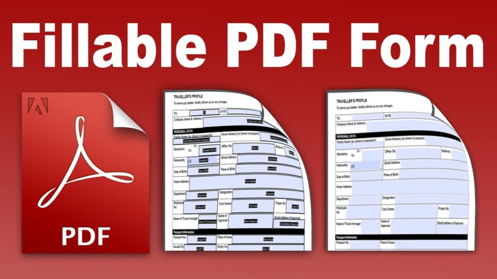 Fillable PDF form icon